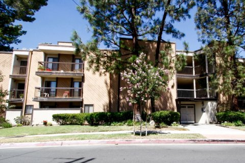 Holly View Glendale California