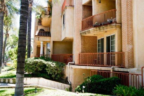 Piedmont Terrace Glendale California