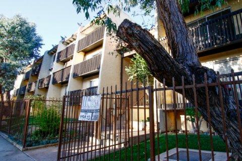Eucalyptus Grove Inglewood