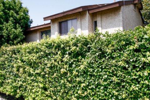 Cabrillo Park Sylmar California