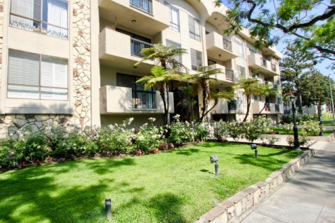 The Beverly Palm Condominiums beverly hills