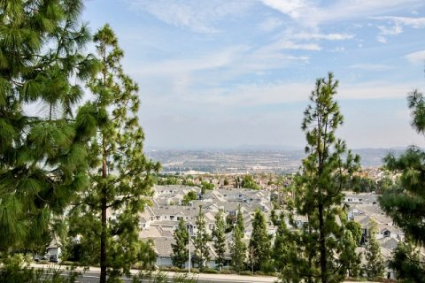 Vistas Above Wood Canyon Aliso Viejo
