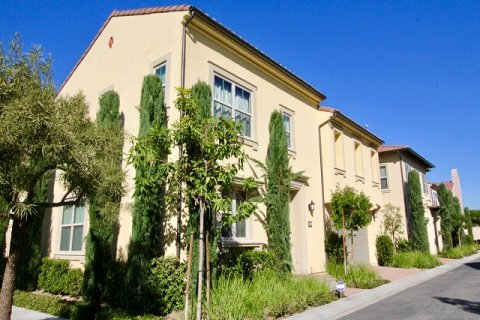 Santa Cruz Irvine