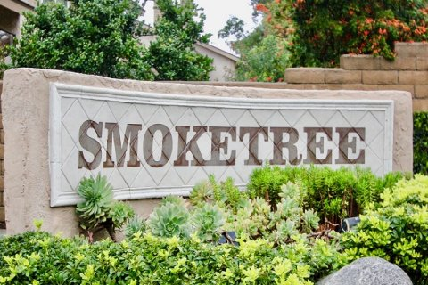 Smoketree Lake Forest