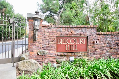 Belcourt Hill Newport Beach
