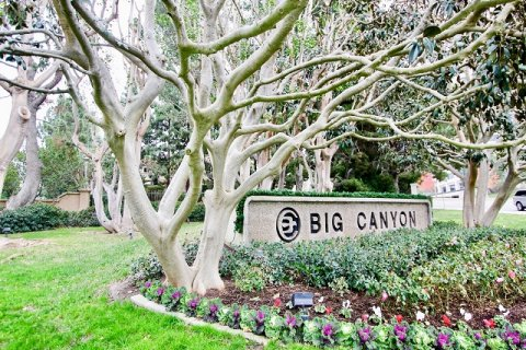 Big Canyon Deane Newport Beach