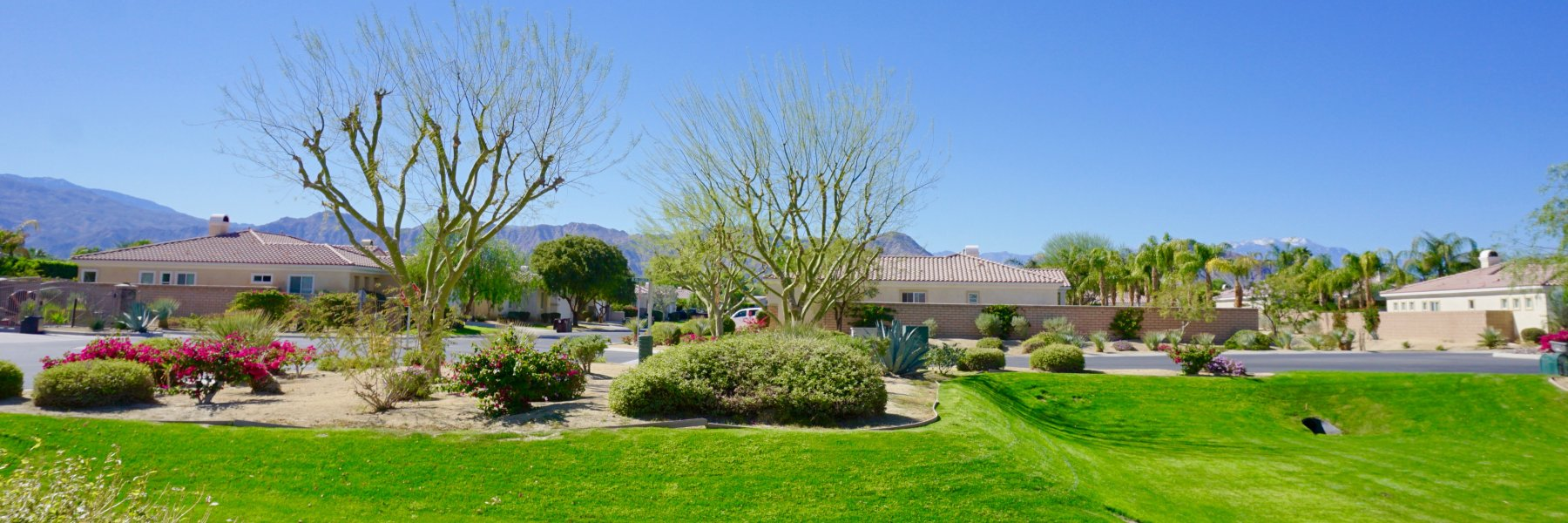 Estacio is a community of homes in Indio California
