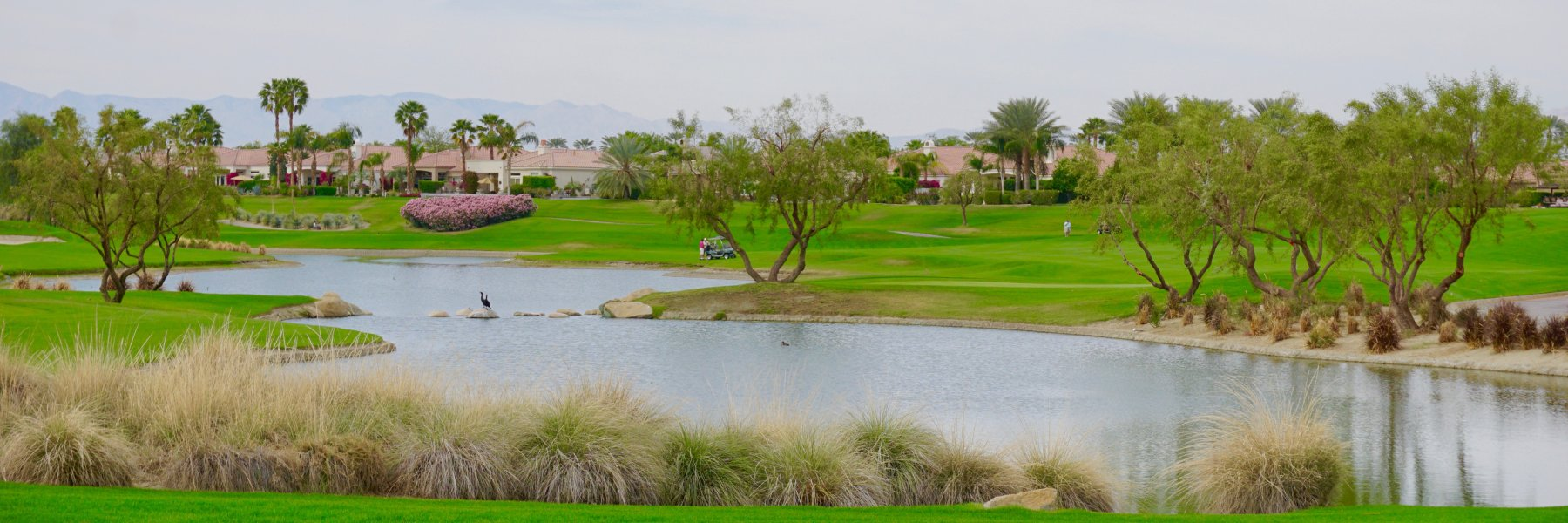 Mountain View Country Club is a community of homes in La Quinta California
