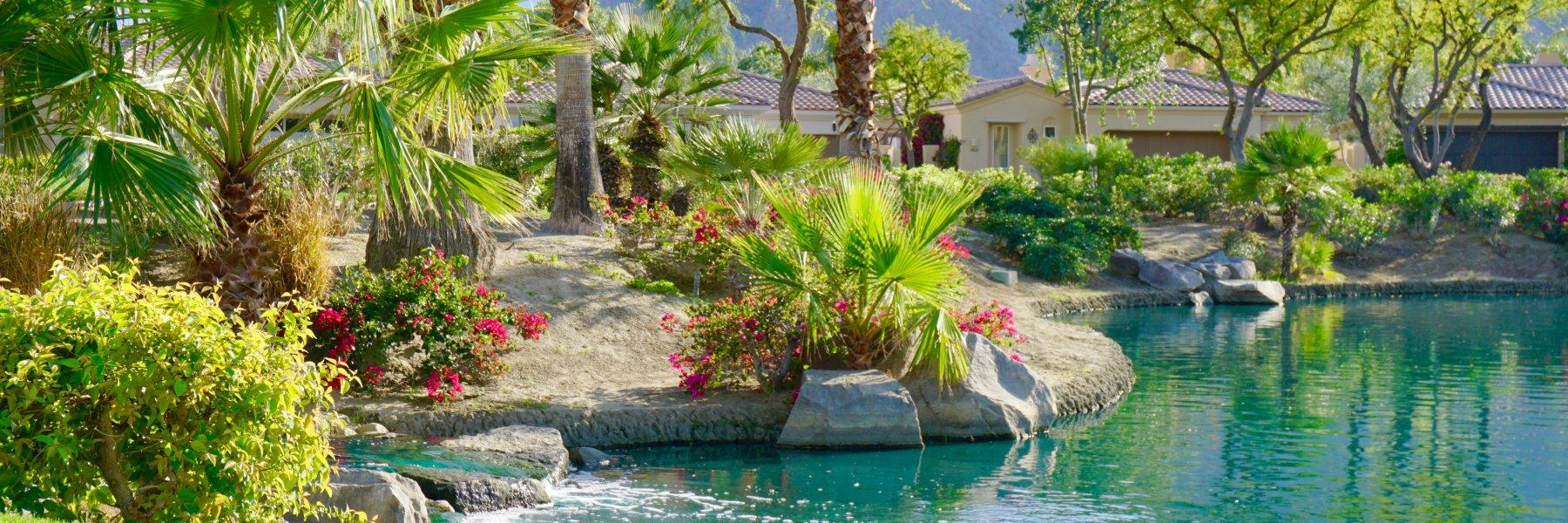 The Citrus is a community of homes in La Quinta California
