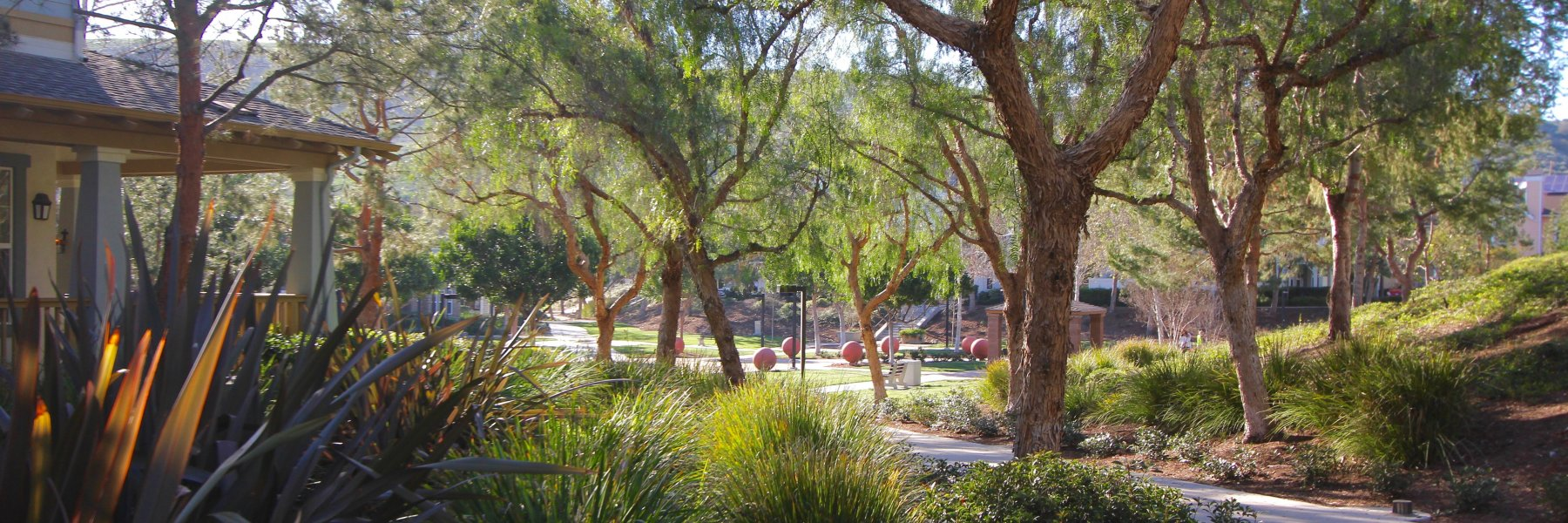 Briar Rose is a community of homes in Ladera Ranch California