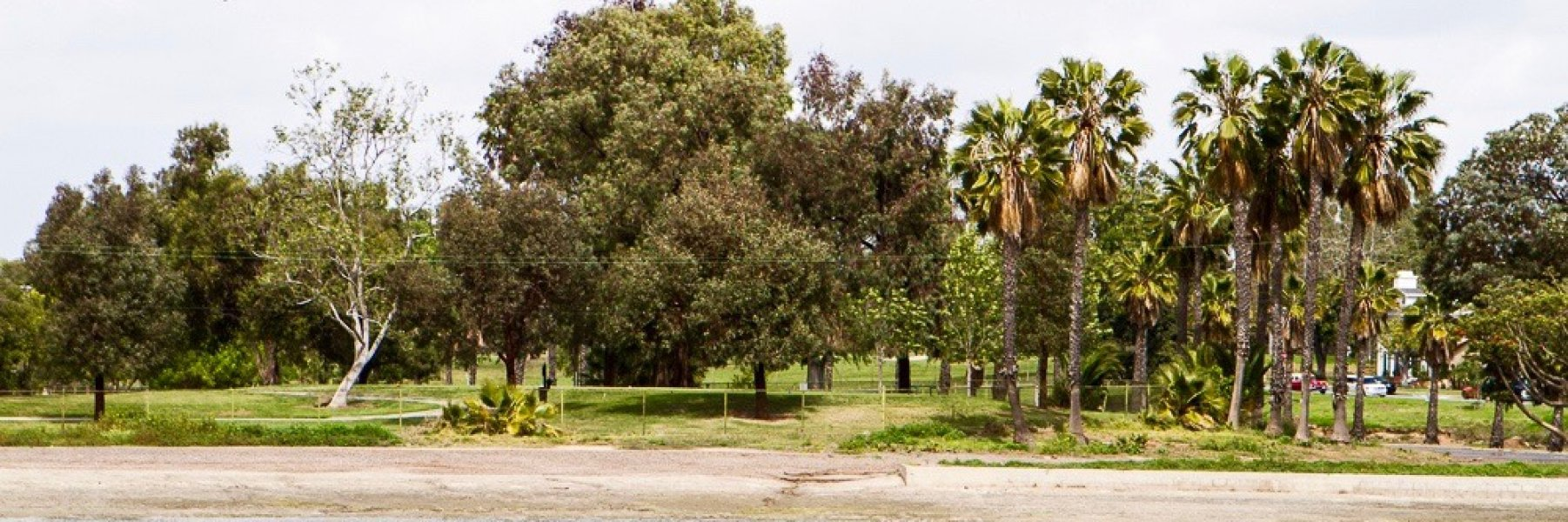 Alamitos Heights is a community of homes in Long Beach California