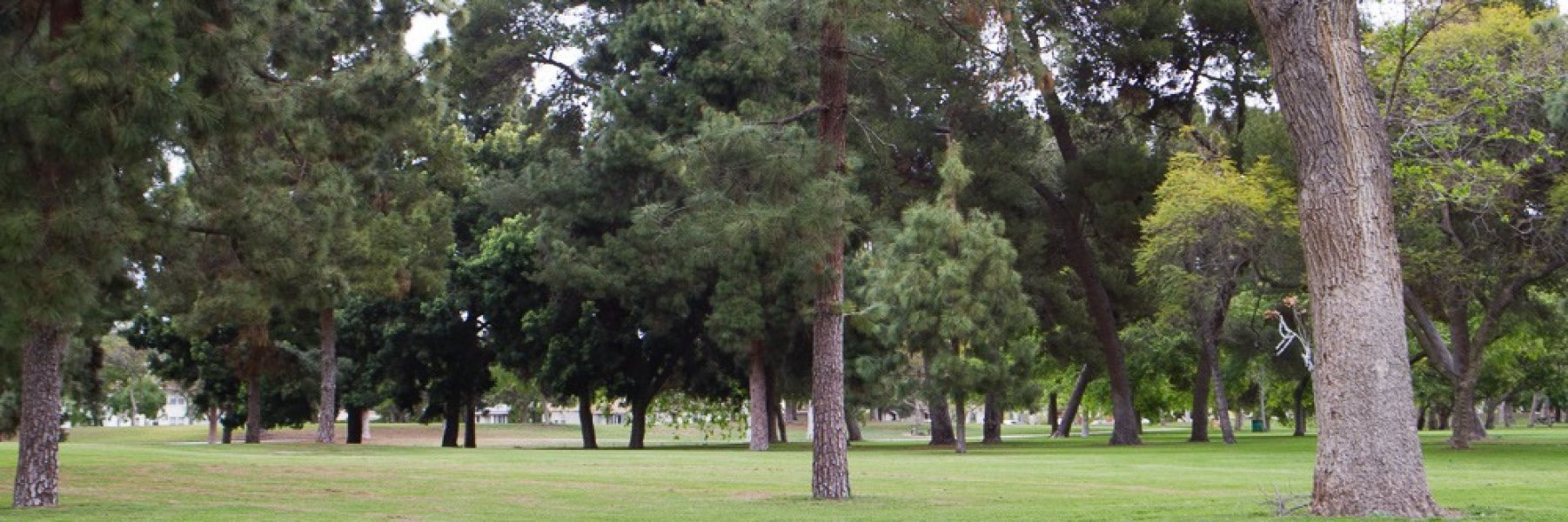 Lakewood Village is a community of homes in Long Beach California