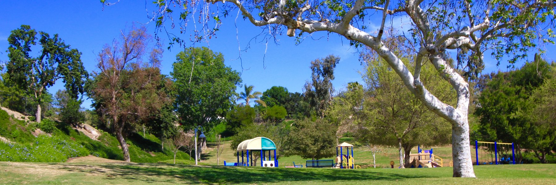 La Paz South is a community of homes in Mission Viejo California