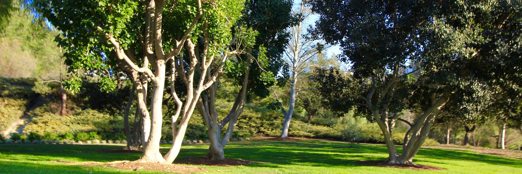 Pacific Hills is a community of homes in Mission Viejo California