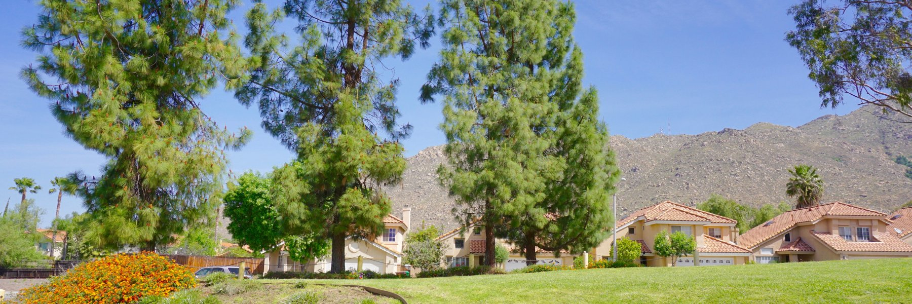 Box Springs is a community of homes in Moreno Valley California