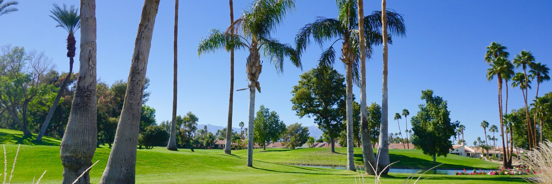Avondale Country Club is a community of homes in Palm Desert California