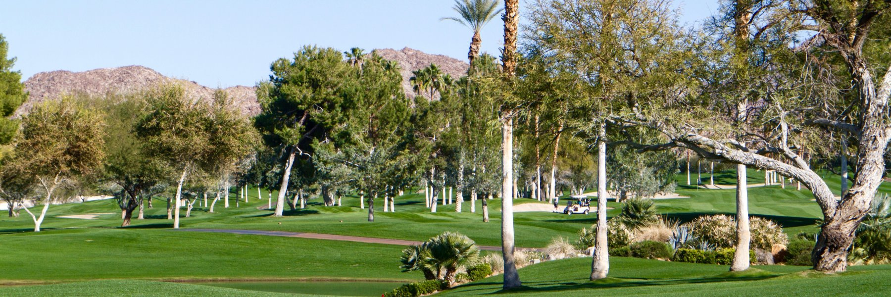 Ironwood Country Club is a community of homes in Palm Desert California