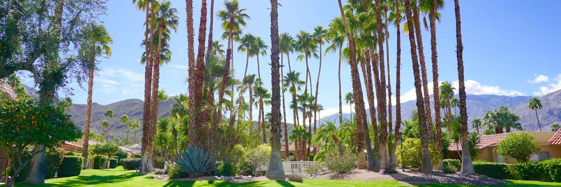 Andreas Hills is a community of homes in Palm Springs California
