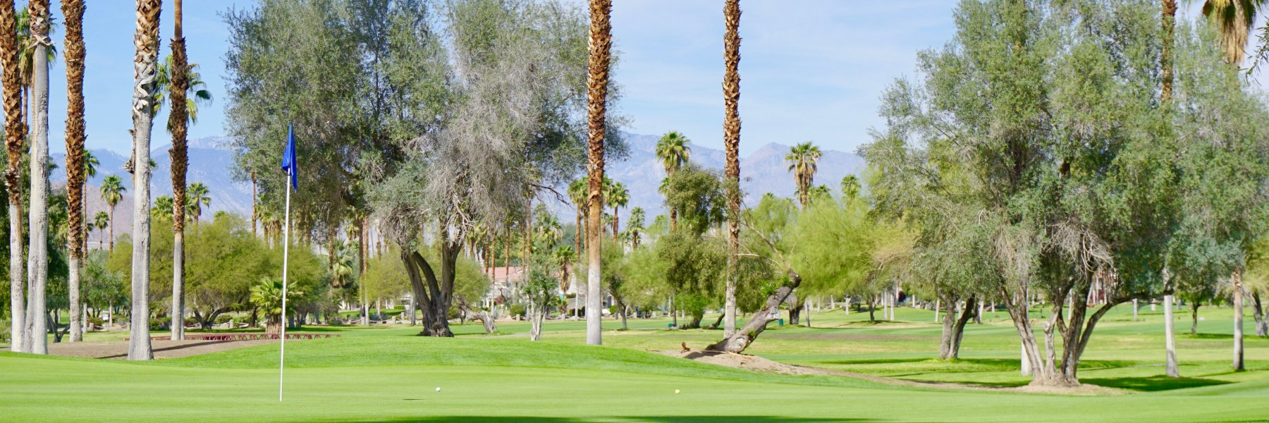 Mesquite Country Club is a community of homes in Palm Springs California
