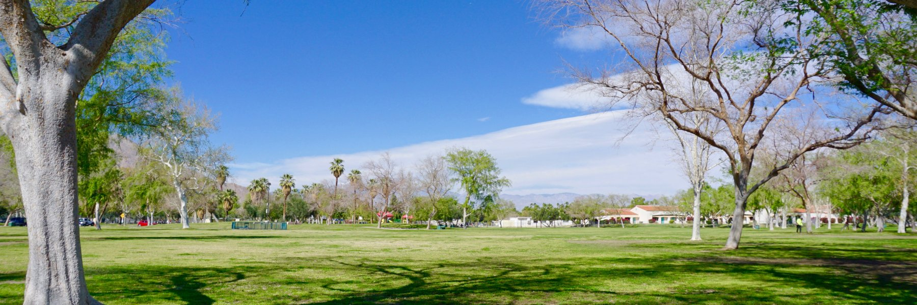 Ruth Hardy Park is a community of homes in Palm Springs California