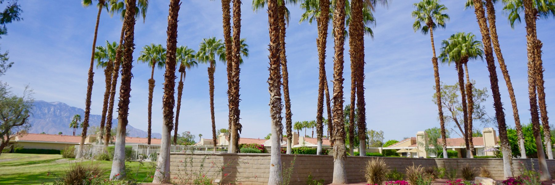 Wilshire Palms is a community of homes in Rancho Mirage California