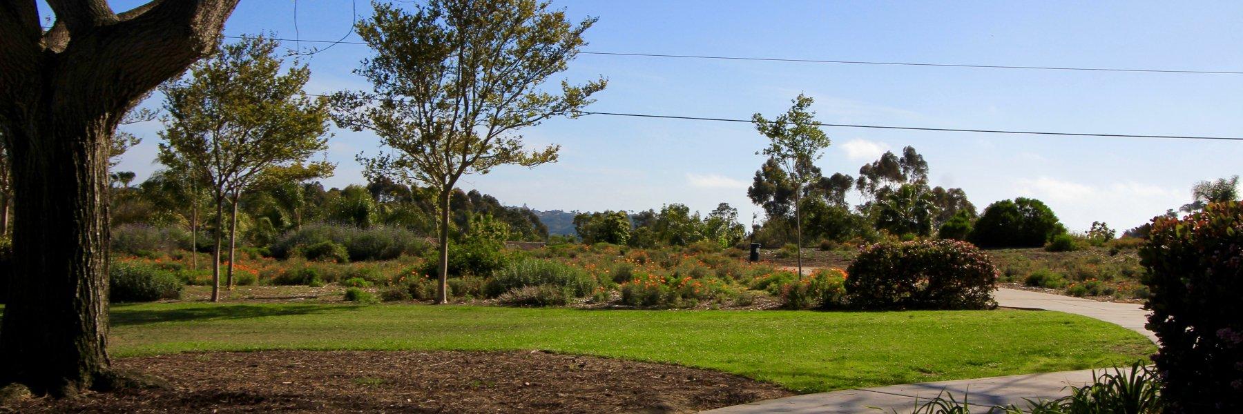 Sanderling is a community of homes in Carlsbad California