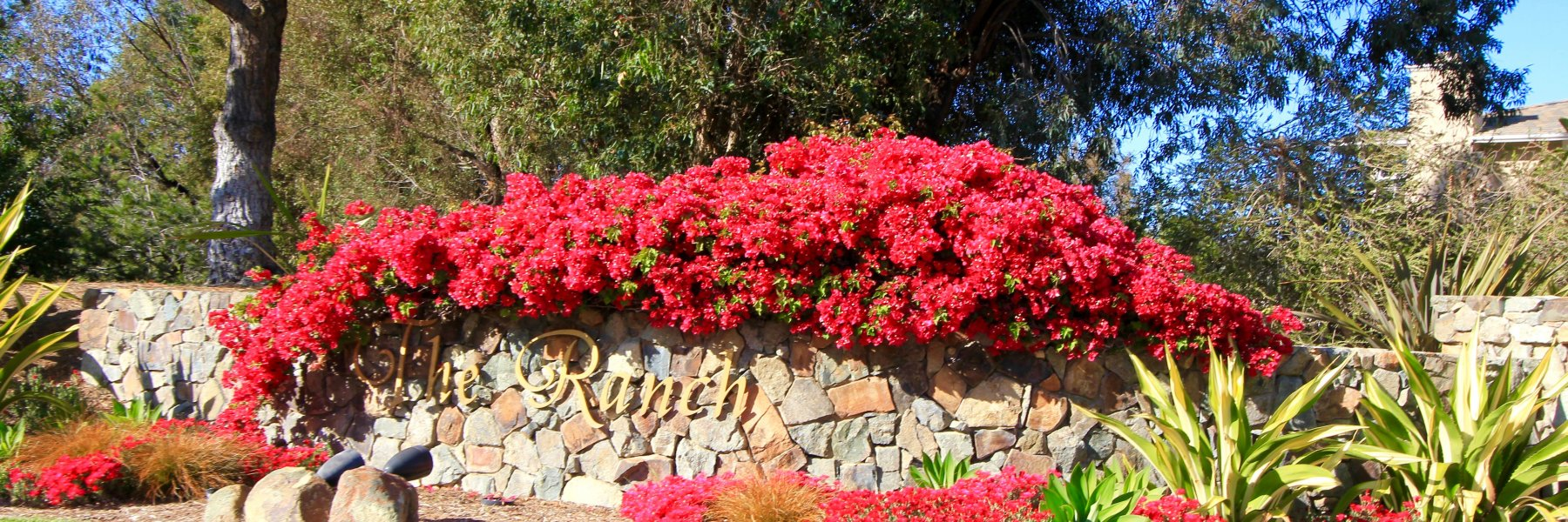 The Ranch is a community of homes in Carlsbad California