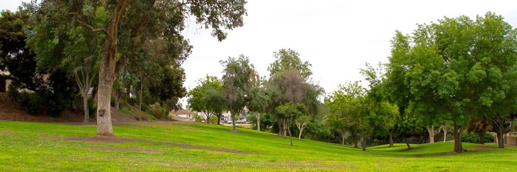 Rancho Del Rey in Chula Vista