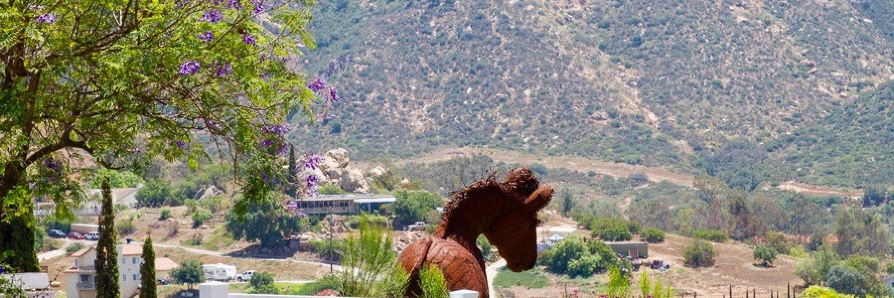 Blosson valley in El Cajon