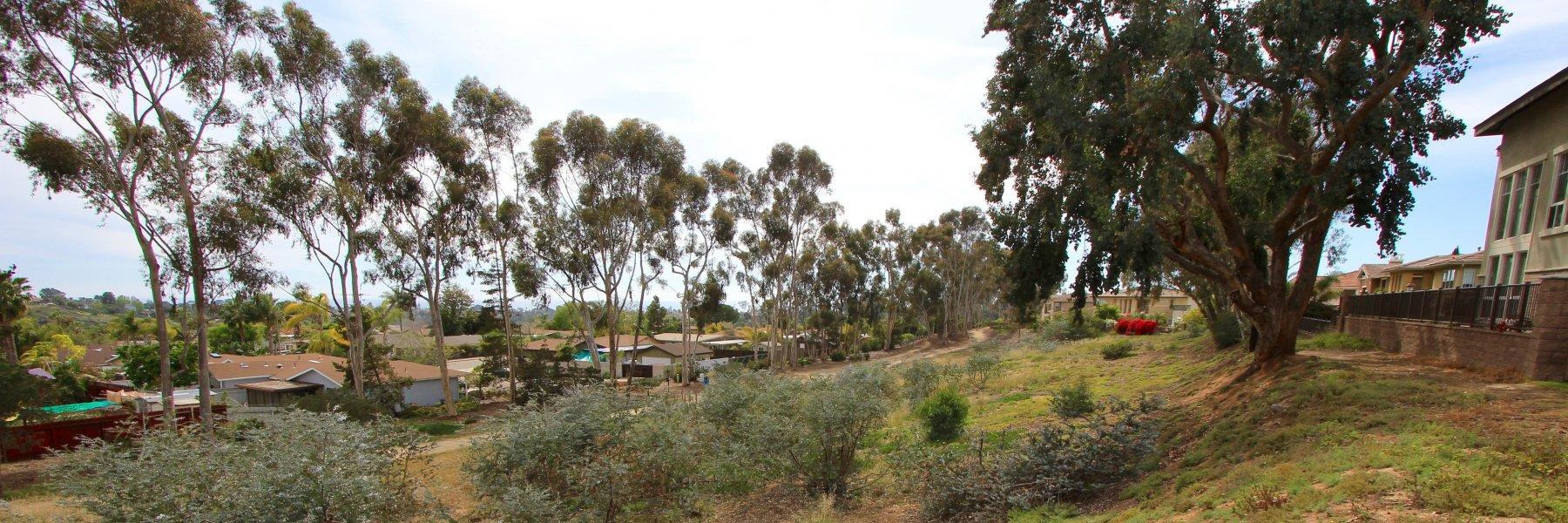 Encinitas Ranch is a community of homes in Encinitas California