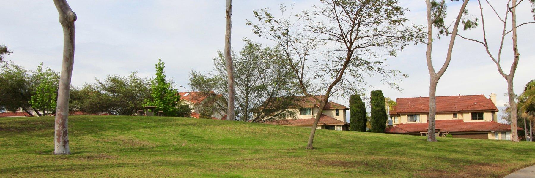 Fieldstone is a community of homes in Encinitas California