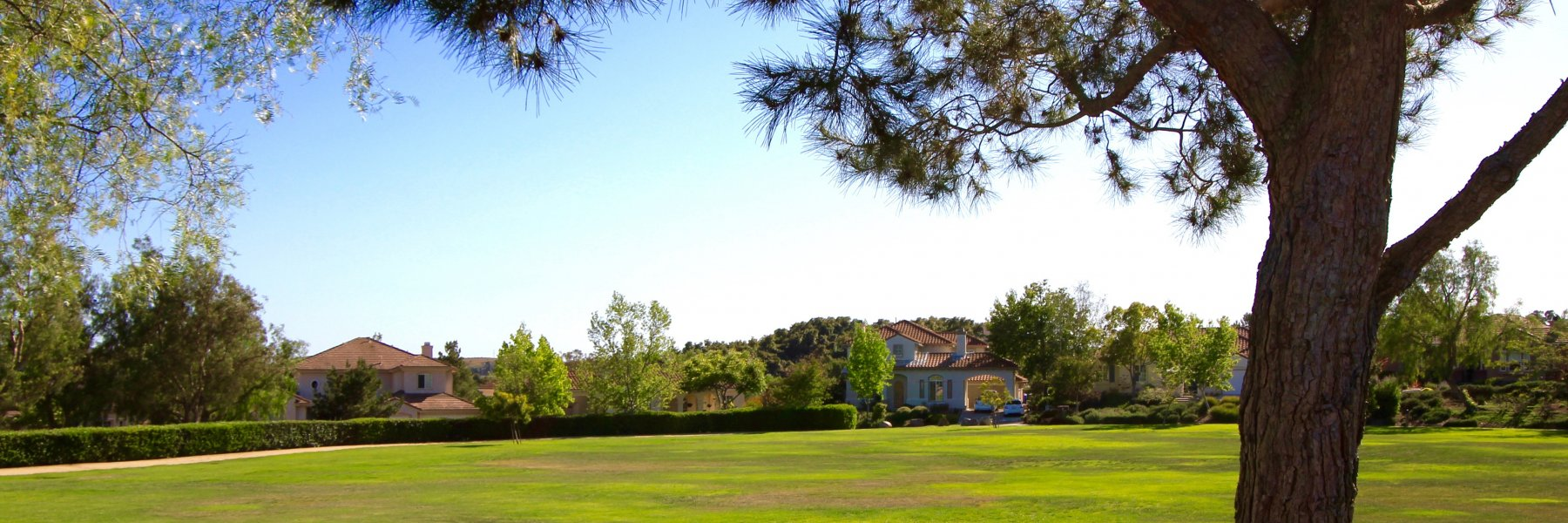 Peppertree Park is a community of homes in Fallbrook California