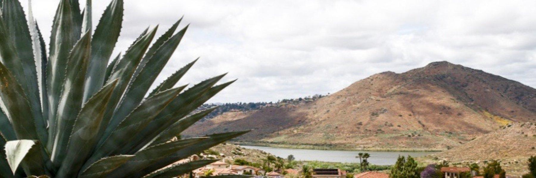 Westwood is a community of homes in Rancho Bernardo California