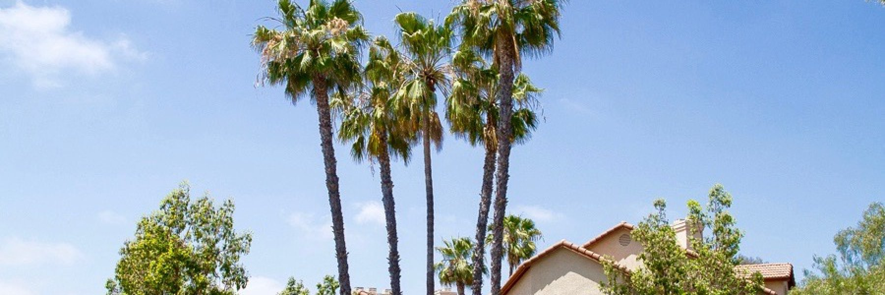 Affinity is a community of attached homes in San Diego California