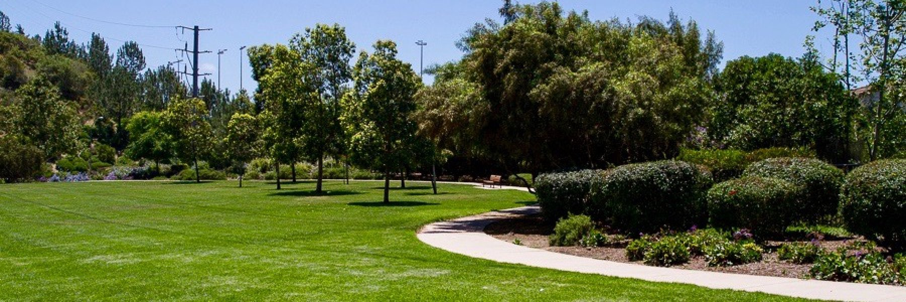 Torrey Hills is a community of homes in San Diego California