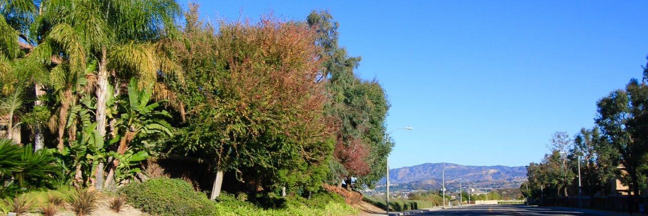 Anaheim Ridge Estates is a community in Anaheim Hills CA