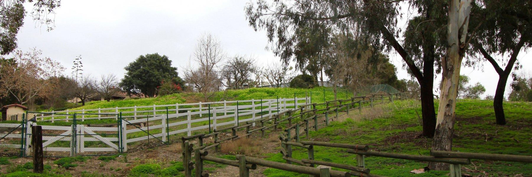 Mission Hills Ranch is a community of homes in San Juan Capistrano California