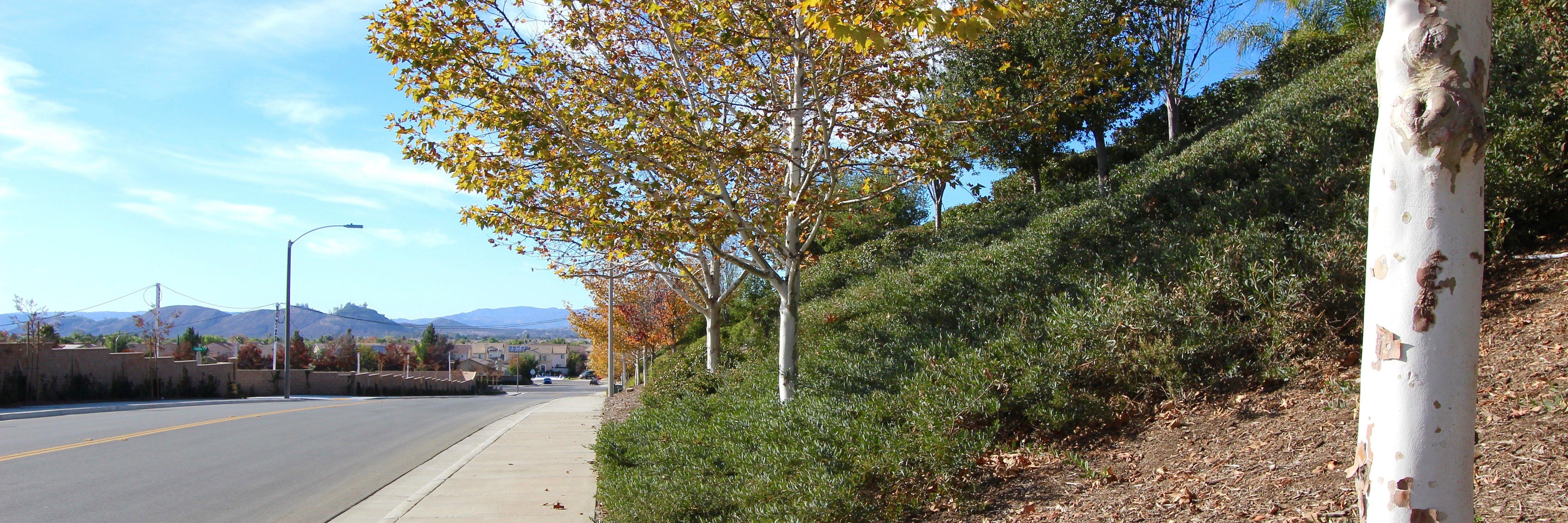 Summit Ridge is a community located in Winchester California