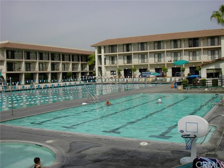 Los Caballeros Sports Club Olympic swimming pool.