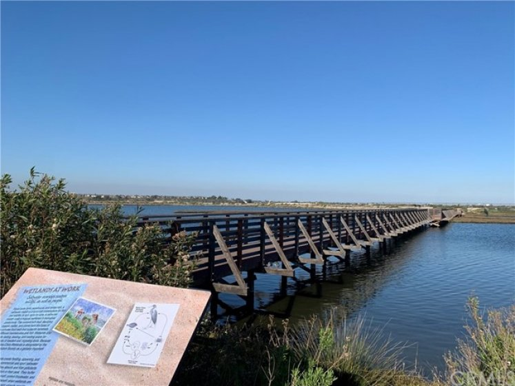 Bolsa Chica Wetlands trail is just up the street