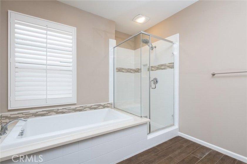 Master spa like bath tub and shower