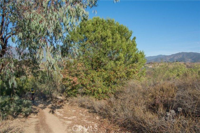 Running trail behind complex