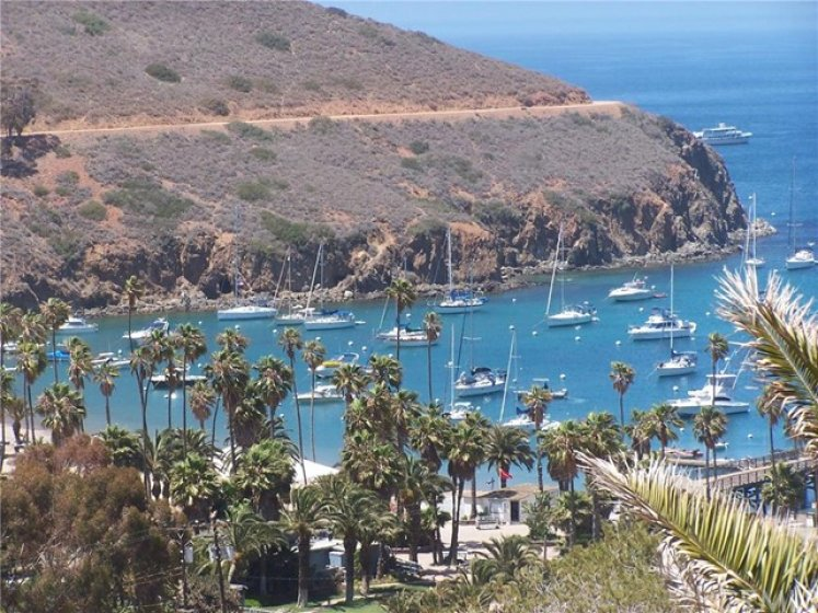 One hour to Catalina Island Two Harbors