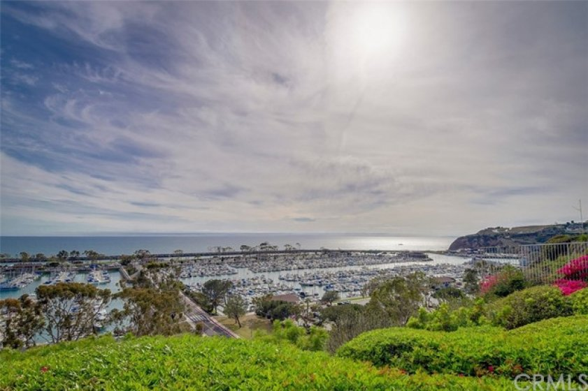 Enjoy Whale watching, Paddle Boarding and fishing in Dana Point Harbor