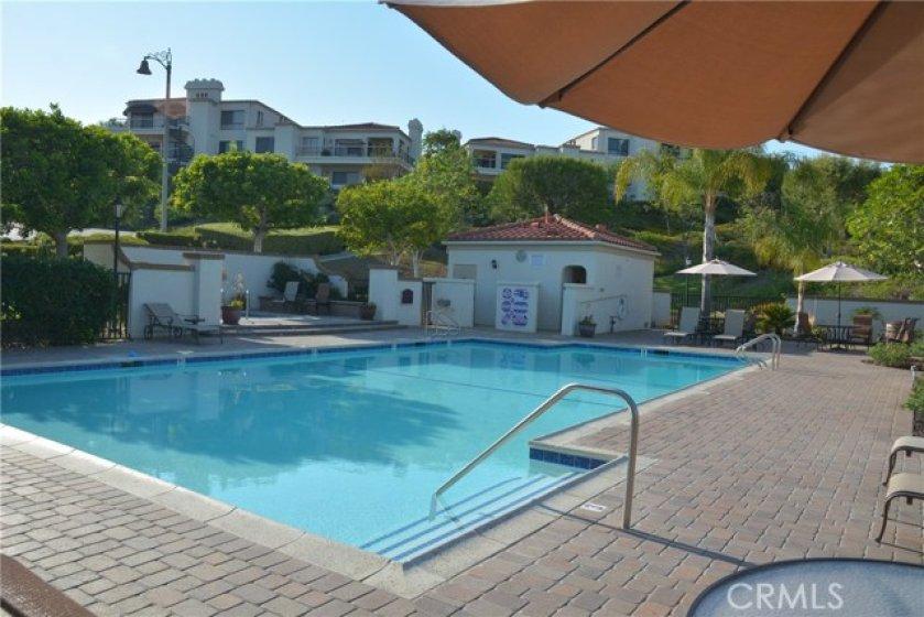 Association Pool & Spa 1
