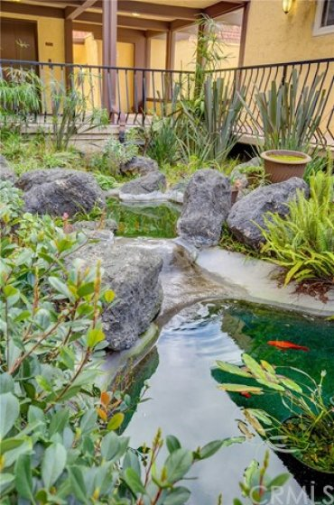 Green belt with Koi pond outside your front door.