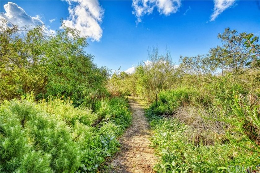 Hiking trails through Canyon Park and Talbert Nature Preserve.