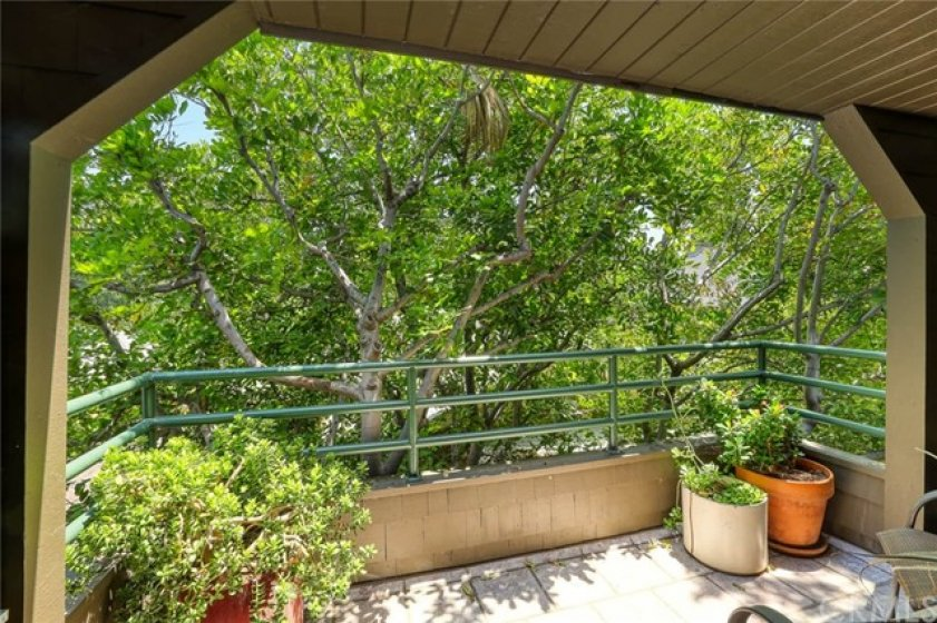 Large tree-top balcony when a little serenity is called-for.