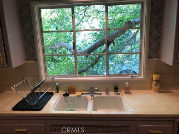 Kitchen Window View.