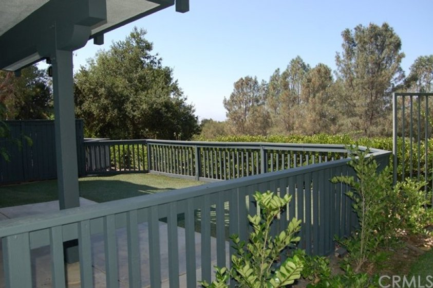 Enclosed backyard with covered patio and artificial lawn - all overlooking O'Neil Regional Park!